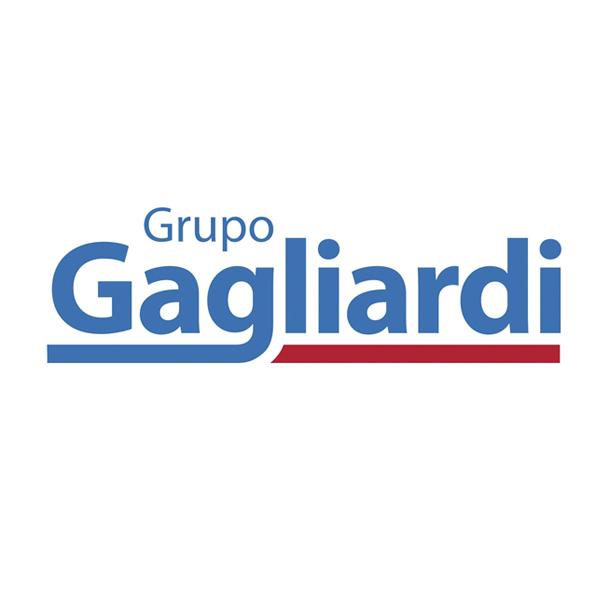 https://www.izysoft.com.br/wp-content/uploads/2020/11/grupogabriardi.jpg